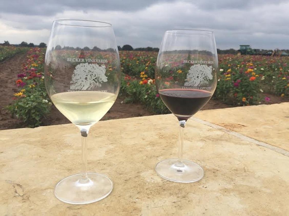 Becker vineyard  wine 1
