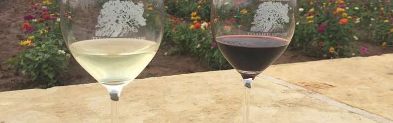 ​Why Texas Hill Country wineries should be on your Southern travel bucket list