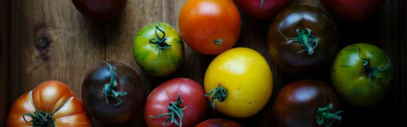 Heirloom tomatoes hero size credit vince lee unsplash