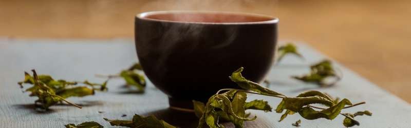 Let's talk tea: The Southern-grown future of the world's most popular drink