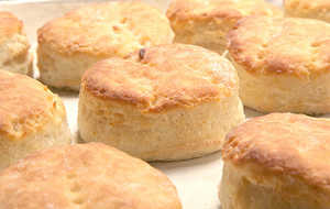 Old-Fashioned Southern Buttermilk Biscuits