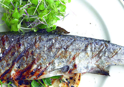 Grilled Trout with Lemon and Fresh Herbs