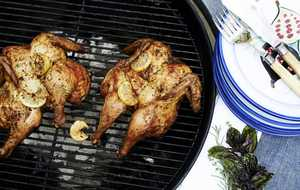 grilled chicken with lemon rosemary and thyme