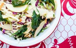 Apple Kale Coleslaw