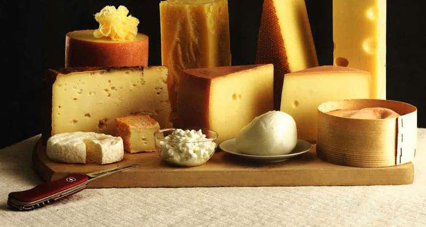 Victorinox cheese knife