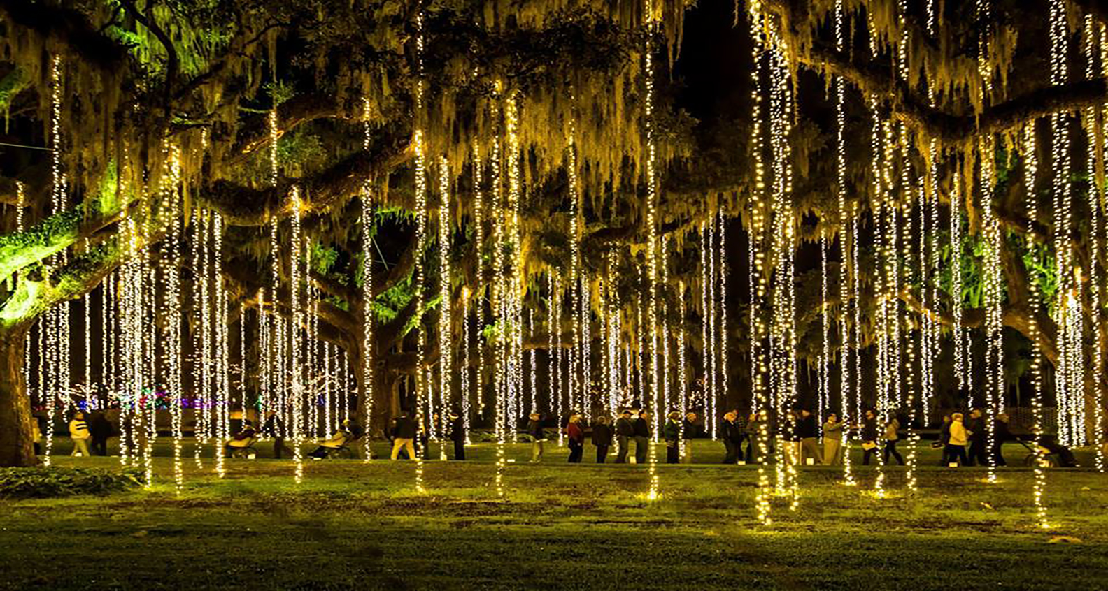 Candles and lights at Brookgreen Gardens