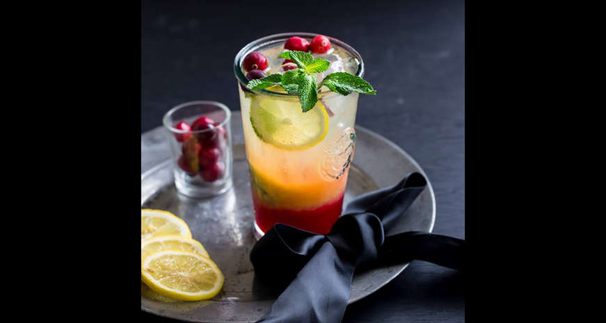 Cranberry Mojito Mocktail