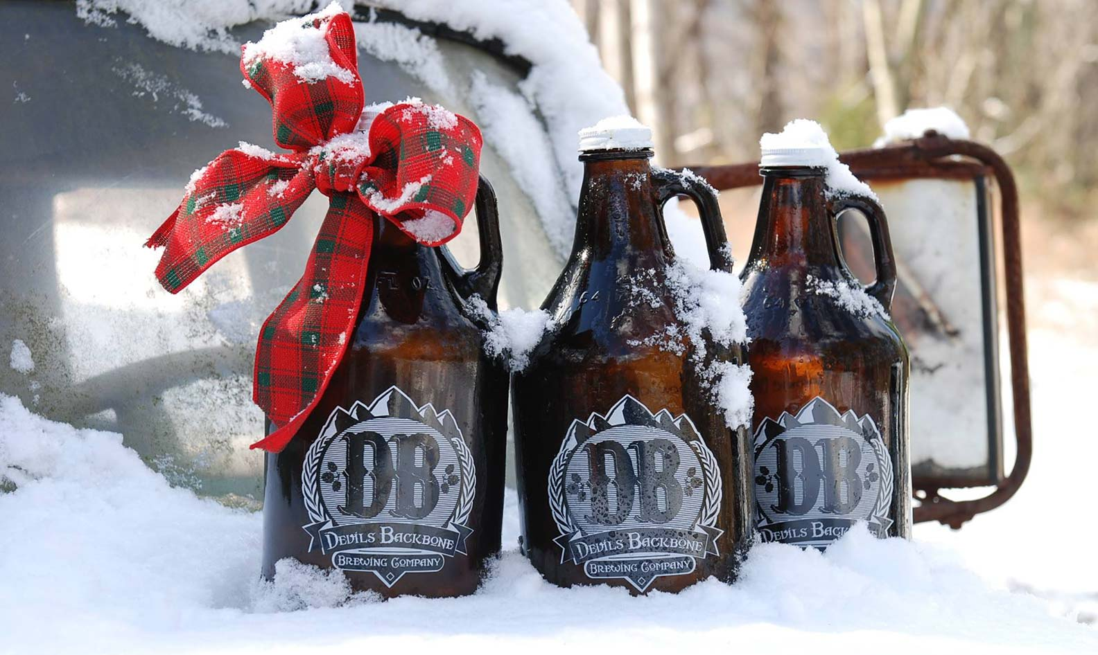 Devils Backbone growlers in the snow