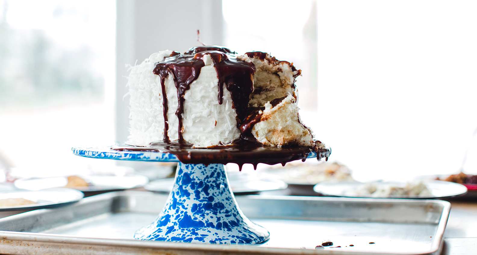 Chocolate-covered coconut cake