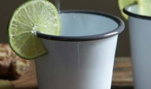 Crow Canyon Home Enamel Short Tumbler 10 ounce Grey Rim With Lime
